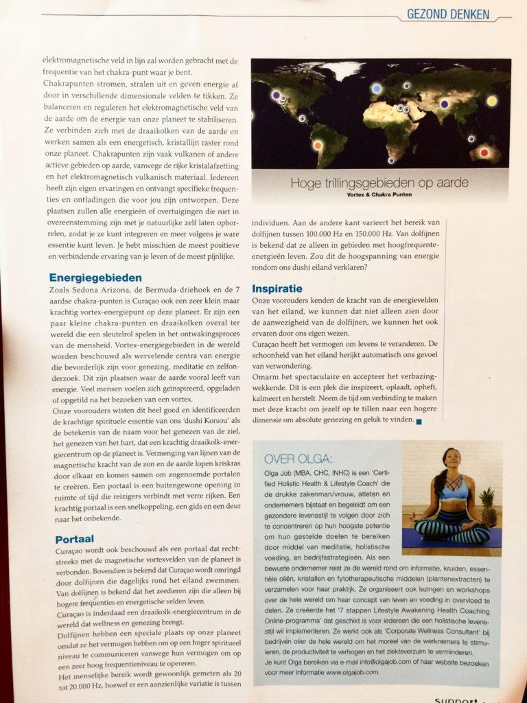 Chakra Centers & Vortex Energy - Olga Job